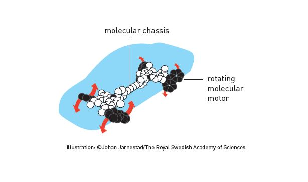 Video: the 2017 nobel prize in chemistry: cryo-electron microscopy.