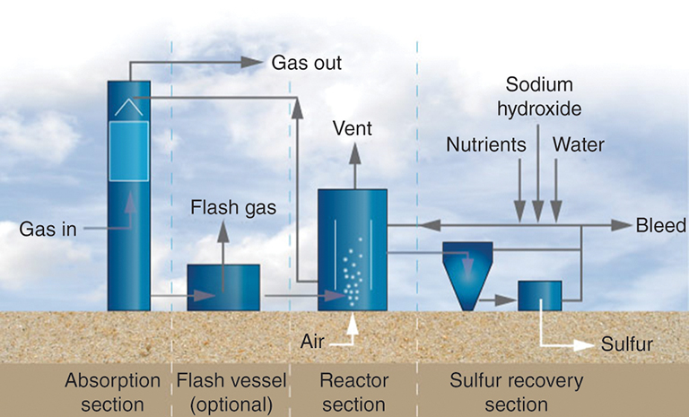 Natural Gas Sulfur Content By Weight